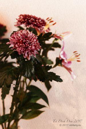 vietdung.eu-DinhDau-Flowers-04.jpg