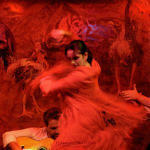 FlamencoPassion_01.jpg