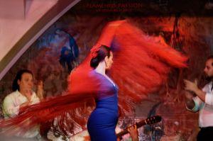 FlamencoPassion_03.jpg