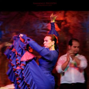 FlamencoPassion_04.jpg