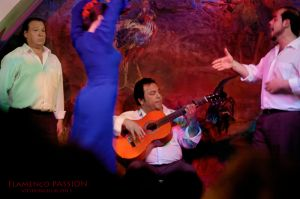 FlamencoPassion_05.jpg