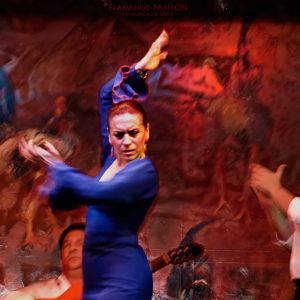 FlamencoPassion_07.jpg
