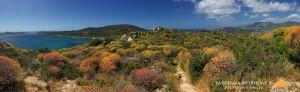 2015-Sardegna-TimiAma-8.jpg