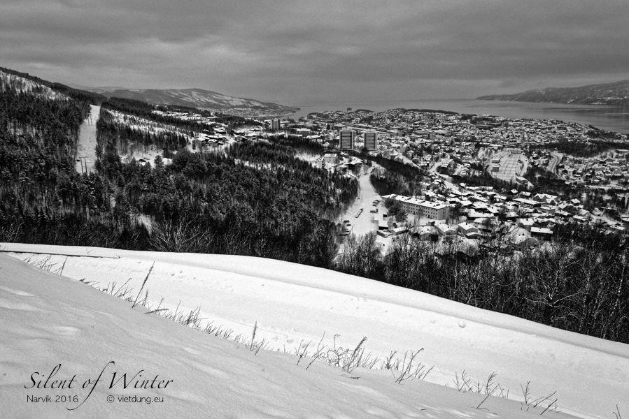 vietdung.eu-SOW-Narvik-1.jpg