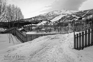 vietdung.eu-SOW-Narvik-013.jpg