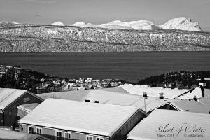 vietdung.eu-SOW-Narvik-017.jpg