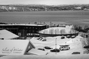 vietdung.eu-SOW-Narvik-019.jpg