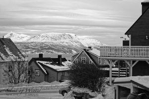vietdung.eu-SOW-Narvik-020.jpg