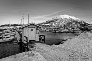 vietdung.eu-SOW-Narvik-021.jpg