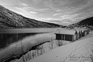 vietdung.eu-SOW-Narvik-022.jpg