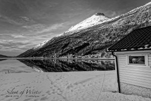 vietdung.eu-SOW-Narvik-023.jpg