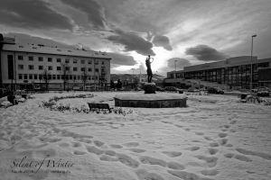 vietdung.eu-SOW-Narvik-025.jpg