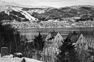 vietdung.eu-SOW-Narvik-2.jpg