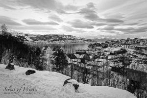 vietdung.eu-SOW-Narvik-3.jpg