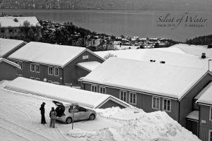 vietdung.eu-SOW-Narvik-4.jpg