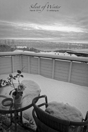 vietdung.eu-SOW-Narvik-9.jpg