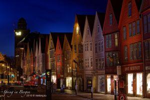 vietdung.eu_Bergen-01.jpg