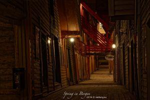 vietdung.eu_Bergen-03.jpg