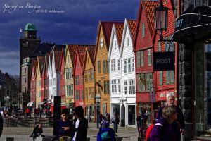 vietdung.eu_Bergen-05.jpg