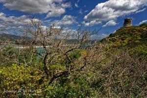 vietdung.eu_Sardegna-SeaSides-07.jpg